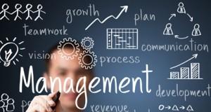 management, Fodirigenti