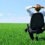 Sostenibilità ambientale in azienda: organizzazione e leadership