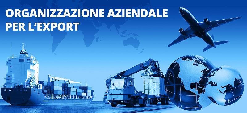 organizzazione aziendale per l'export