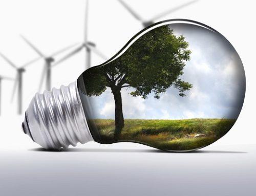 IA0010 – ISO 14001 e i Sistemi di Gestione Ambientale