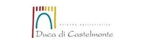 logo-duca-di-castelmonte1