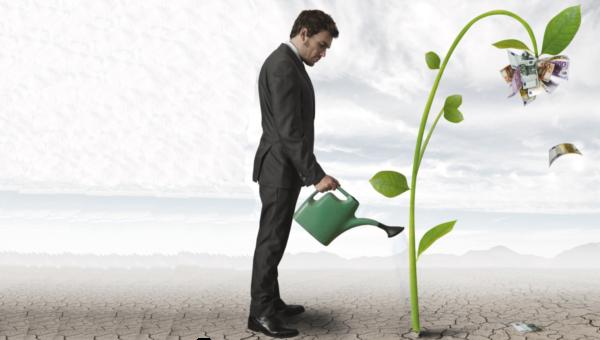 Come un consulente può aiutare a trasformare le informazioni in decisioni manageriali