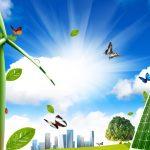 Cosa è il green marketing e come applicarlo in una piccola azienda